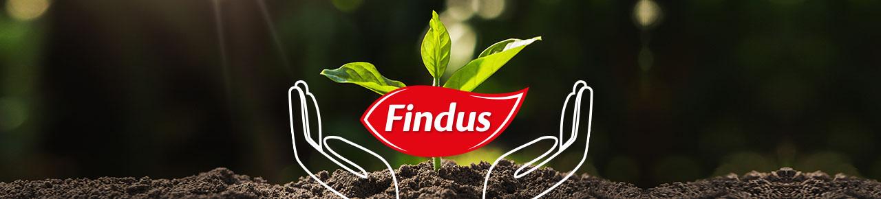 Specialità surgelate Findus