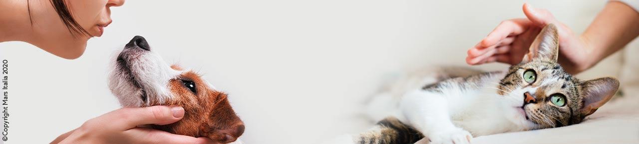 Mars Petfood - Prodotti per cani e gatti