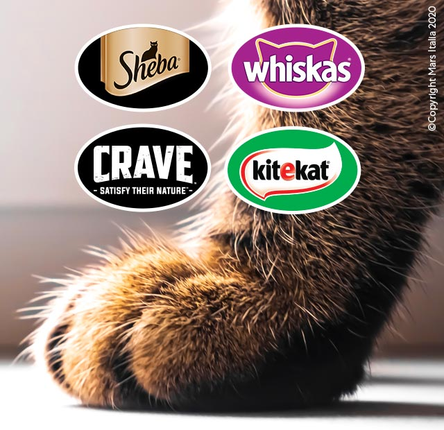 sheba whiskas crave kitekat gatto pasto principale