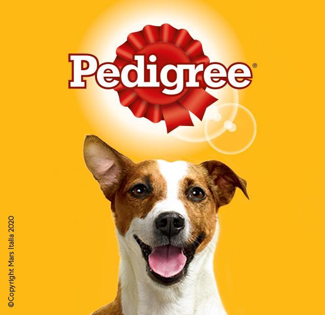 Pedigree Cane Snack